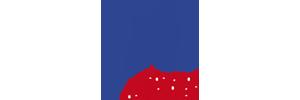 Logo de la fédération National des infirmiers